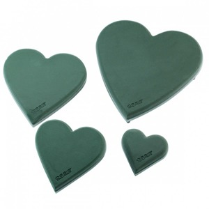 OASIS® ECObase® Heart